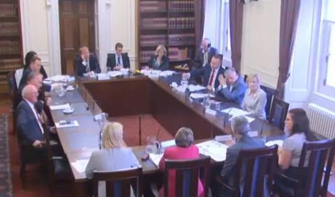 Image from oral evidence session video capture